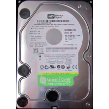 Б/У жёсткий диск 500Gb Western Digital WD5000AVVS (WD AV-GP 500 GB) 5400 rpm SATA (Батайск)
